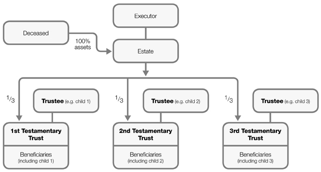 discretionary family trust essay How to set up a family trust introduction what is trust a exists when one person (a trustee) holds and owns property for the benefit of another.