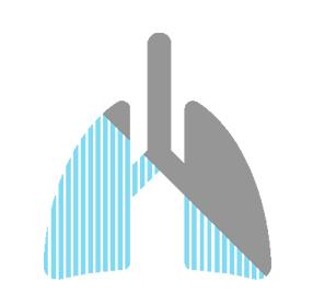 Abestos lungs